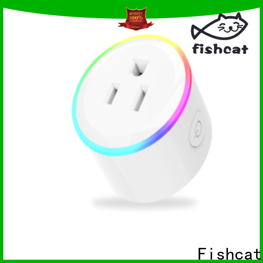 Fishcat convenient wireless smart socket popular for voice-activated home