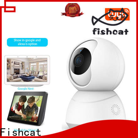 Fishcat wireless wifi security camera system manufacturer smart home