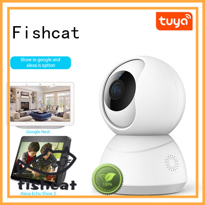 Fishcat convenient home monitoring system manufacturer smart home